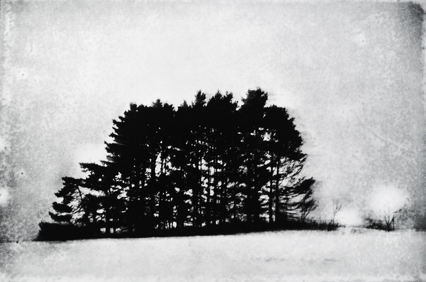 Michael Ast, etching, photopolymer, Charbonnel, Hahnemuhle, intaglio, printmaking, Winter, storm, Spinnerstown, Bucks County, grove, hillside, Pennsylvania, PA