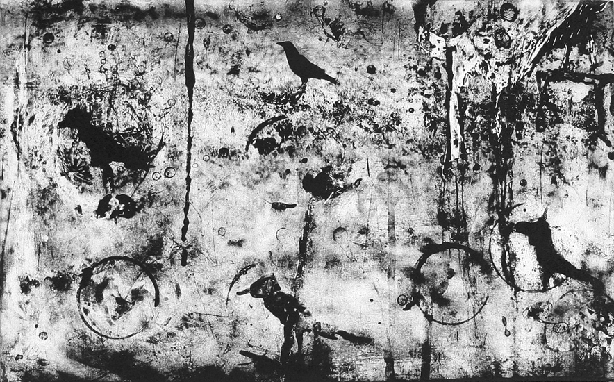 Michael Ast, etching, photopolymer, printmaking, tusche, abstraction, raven, crow, charbonnel, Hahnemuhle, intaglio
