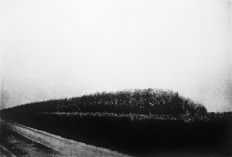 Michael Ast, etching, photopolymer, Charbonnel, Hahnemuhle, intaglio, printmaking, Cassel Rd., Lower Milford Twp., PA, Pennsylvania, rural, cornstalks, driveby
