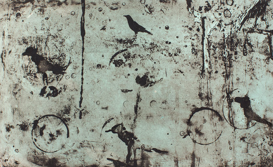 Michael Ast, viscosity, viscosity print, etching, intaglio, photopolymer, avian, birds, crow, raven, abstract, printmaking, Hahnemuhle, Charbonnel, bone black, transparent base, tint base
