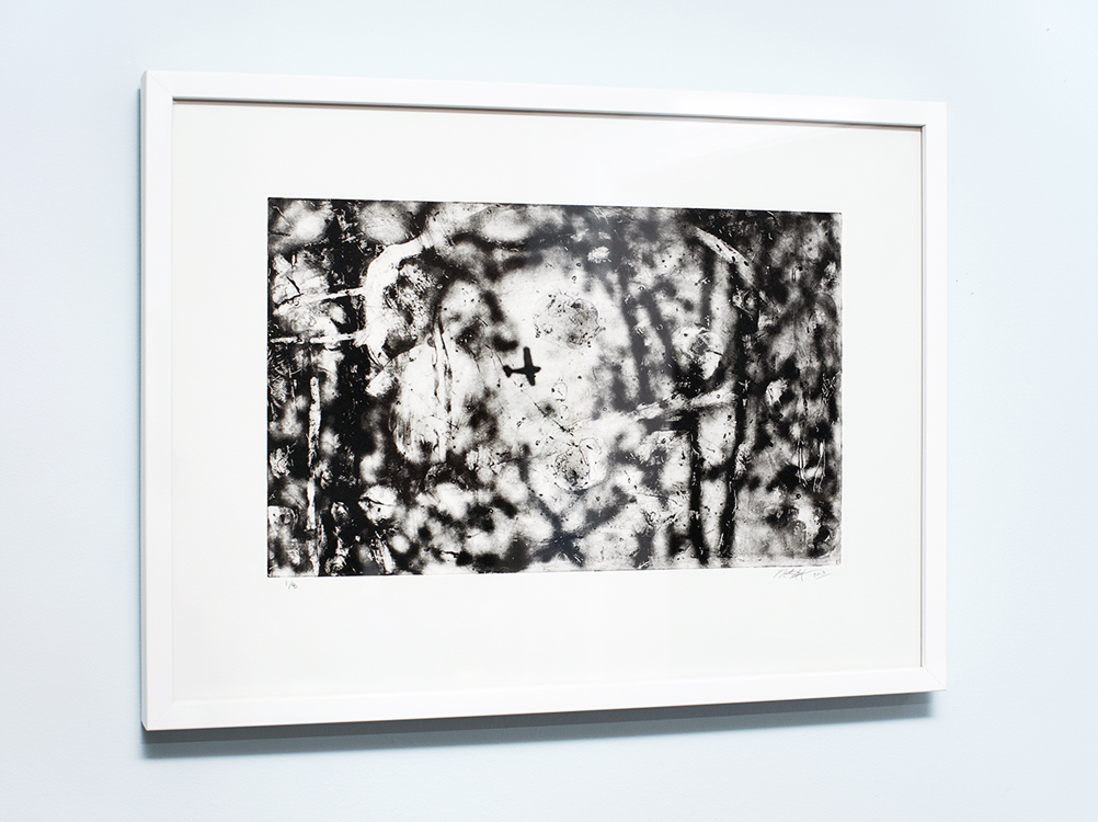 Michael Ast, michaelast, photopolymer, printmaking, printmaker, photo-etching, etching, intaglio, photo etching, Hahnemuhle, Charbonnel, tusche, Haycock Mountain, Bucks County, airplane, summit, aeroplane, prop plane, abstract, expressionism, print, edition size