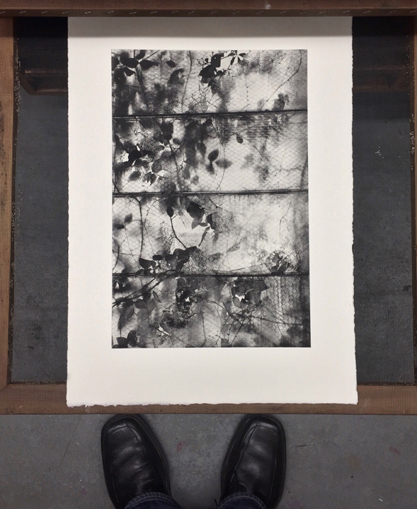 Michael Ast, printmaking, photopolymer, photopolymer etching, etching, intaglio, drying print, Hahnemuhle, Charbonnelle