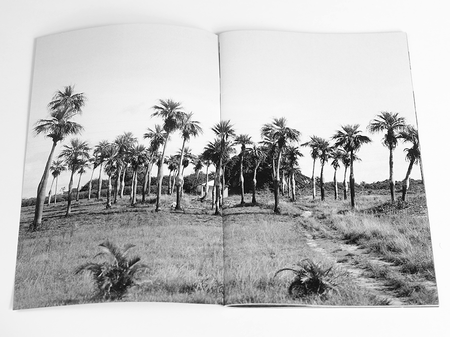 These Windows Are Tinted To Help You Sleep, Michael Ast, zine, Cuba, Vinales, road trip, low-fi, self-publish, photozine, black and white photography, visceral, stream of consciousness, driveby, tinted windows, palms, palm trees, grove