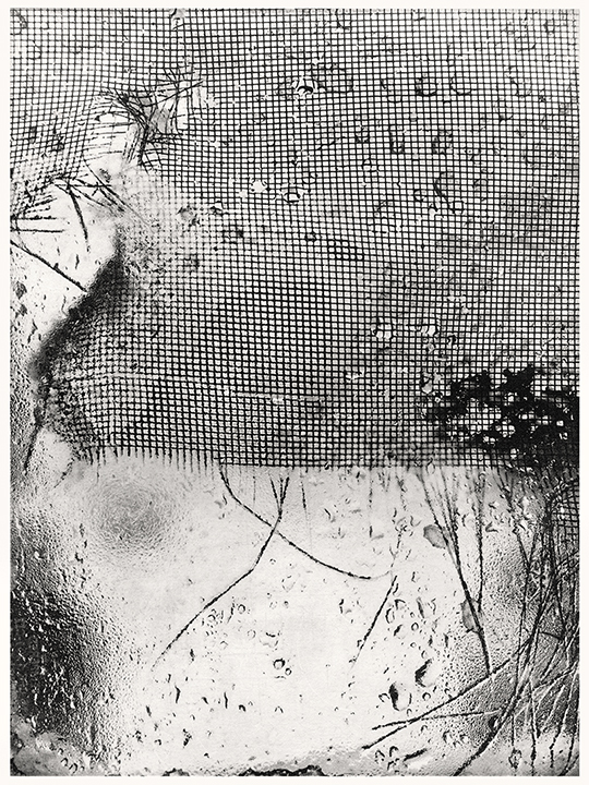 Michael Ast, photo etching, photopolymer etching, printmaking, intaglio, Charbonnel et Walker, Charbonnel, Hahnemühle, nor'easter, noreaster, snowstorm, Winter, screen, torn, front door, severe weather, gail force winds, gail, rain, sleet, stormy
